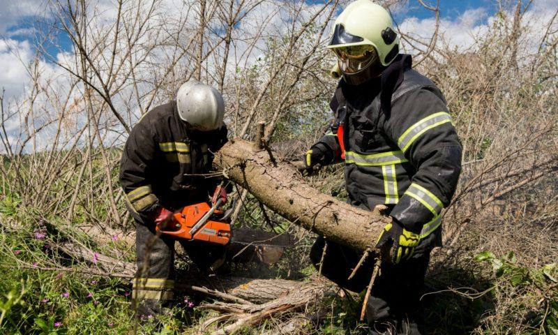 Ситуация с восстановлением электроснабжения Тверской области находится на контроле Губернатора Игоря Рудени