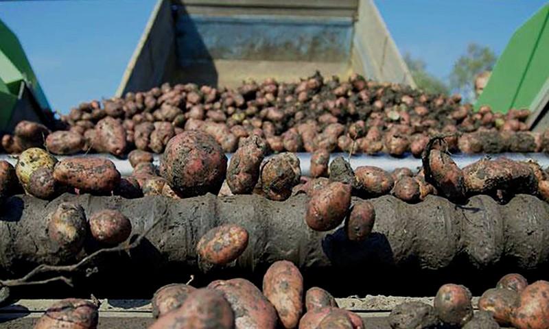 На полях Тверской области завершилась уборка урожая