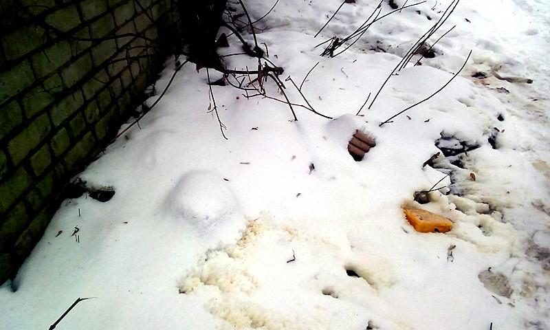 В г. Кимры рядом с местом возгорания даже снег с желтыми разводами остался нетронутым.