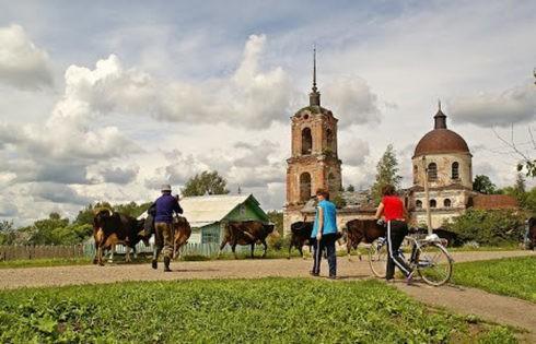 В Кашинском районе Тверской области проходит ежегодный Слет фермеров Тверской области