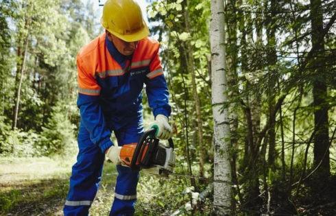 В Тверской области расчищено более 12 тыс. га просек линий электропередачи в ходе учений энергетиков